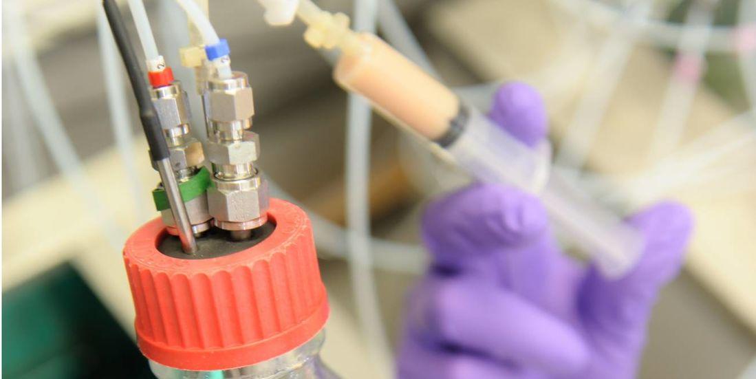 Bioreactors for laboratory-scale experiments. Source: Evonik Industries AG