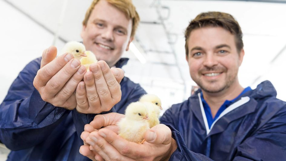 Wouter Bruins (l.) and Wil Stutterheim (r.), the co-founders of Dutch start-up In Ovo which wants to end the killing of day-old male chicks.