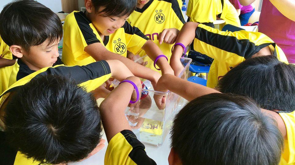 Chemistry enchants kids